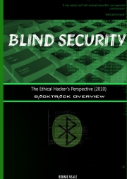 Blind Security 2010