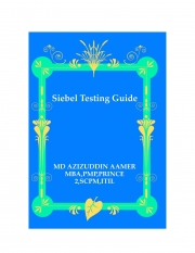Siebel Testing Guide (eBook)