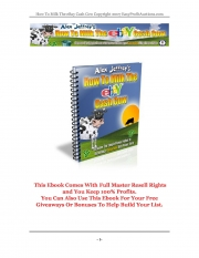 Ebay Cash Cow (eBook)
