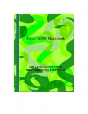Siebel ADM Blackbook (eBook)