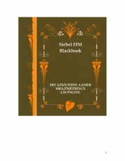 Siebel EIM Blackbook (eBook)