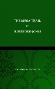 The Mesa Trail (eBook)