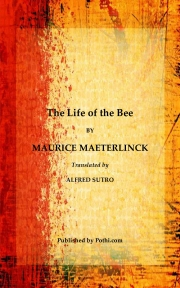 The Life of the Bee (eBook)