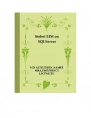 Siebel EIM on SQLServer (eBook)