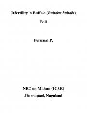 Infertility in Buffalo (Bubalus bubalis) Bull (eBook)