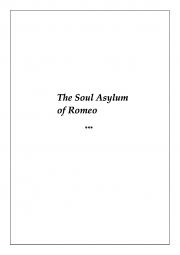 The Soul Asylum (eBook)