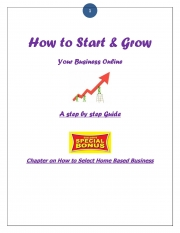 How To Start & Grow Your Business Online- A Step By Step Guide (eBook)
