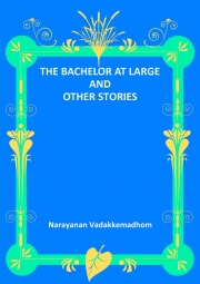 THE BACHELOR AT LARGE AND OTHER STORIES