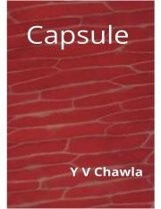 Capsule (eBook)