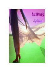 Six Weeks (eBook)