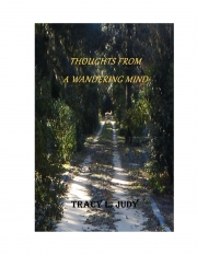 Thoughts From A Wandering Mind (eBook)