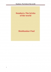 Numbers, The bricks of the world (eBook)