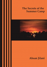 The Secrets of the Summer Camp
