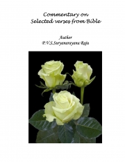 Commentary of selected versus from Bible (eBook)