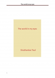 The world in my eyes (eBook)