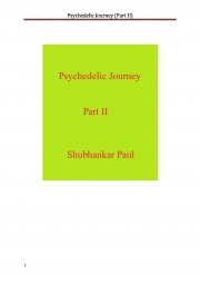 Psychedelic Journey (Part II) (eBook)