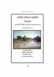 Regional Novel in Assamese Literature (eBook)