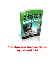 Amazon Income Guide (eBook)