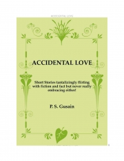 ACCIDENTAL LOVE (eBook)