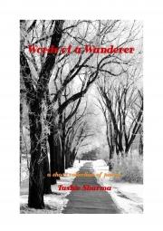 Words of a Wanderer (eBook)