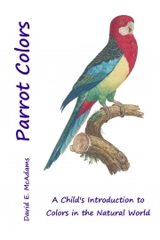Parrot Colors (English)
