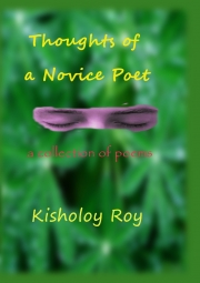 Thoughts of a Novice Poet