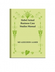Siebel Actual Business Case Studies Manual (eBook)