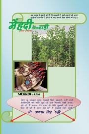Mehndi of Rahi
