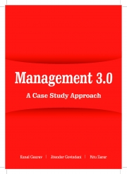 MANAGEMENT 3.0  (eBook)