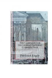 The Campaign for the German Imperial Constitution (eBook)