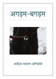 अगड़म-बगड़म (Agadam-Bagadam) (eBook)