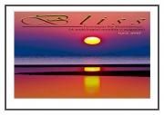 Bliss -- Provision for Providence (eBook)