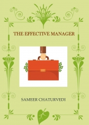 THE EFFECTIVE MANAGER (eBook)