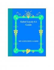 Siebel Loyalty 8.1 Guide (eBook)