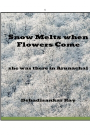 Snow Melts When Flowers Come (eBook)