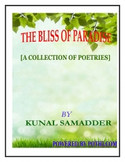 THE BLISS OF PARADISE (eBook)