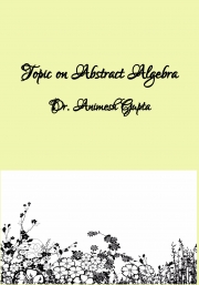 Topic on Abstract Algebra (eBook)