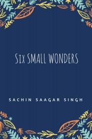 Six Small Wonders