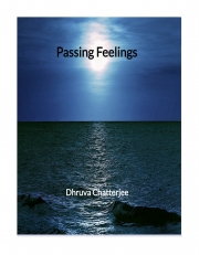 Passing Feelings (eBook)