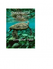 Underwater Delights (eBook)