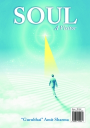 Soul A Visitor (eBook)