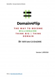 Domain4flip - the way to become millionaire  (eBook)