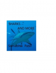 Sharks and More (eBook)