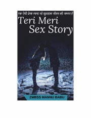 Teri Meri Sex Story (eBook)