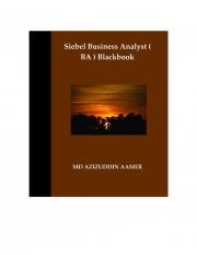 Siebel Business Analyst ( BA ) Blackbook (eBook)