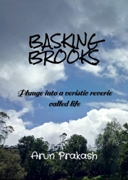 Basking Brooks (eBook)