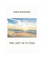 The Art of Flying (eBook)