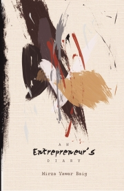 An Entrepreneur's Diary