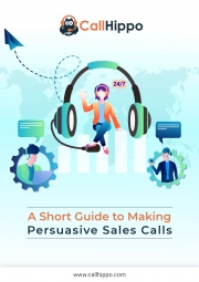 The Art Of The Sales Call, Simplified (eBook)