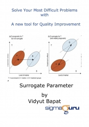 Surrogate Parameter (eBook)